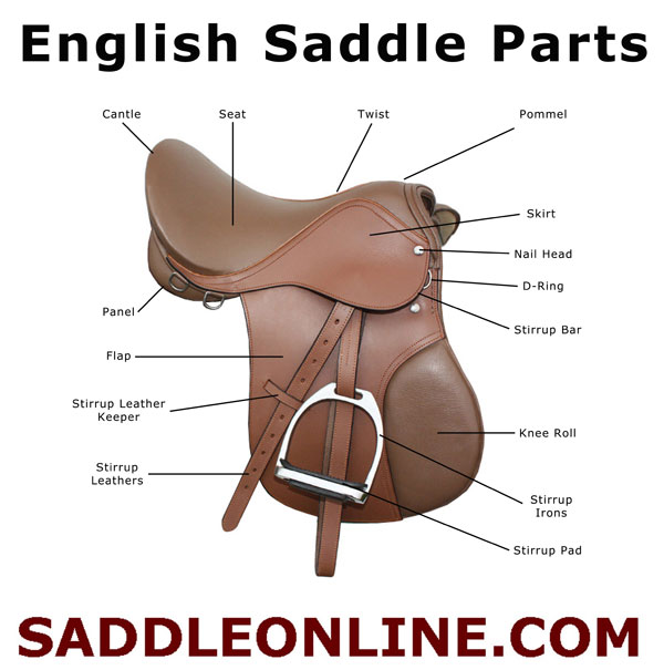 the parts of an english saddle saddleonline com rh saddleonline com Western Saddle Part Names Parts of a Western Saddle and Bridle